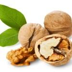 Walnut Improves Sperm Quality
